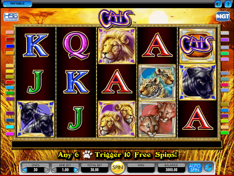 Tragamonedas gratis Cats & Cash descargar 888 poker para pc-935605