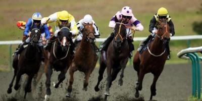 Bonos bienvenida casino carreras de caballos virtuales-436683