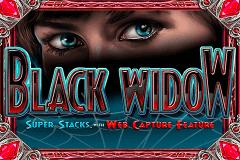 Descargar slot igt gratis tragamonedas Black Widow-137150