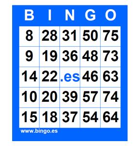 10 euros para probarlos bingo cartones-308477