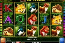Tragamonedas gratis Gaelic Luck bombay para jugar-807597