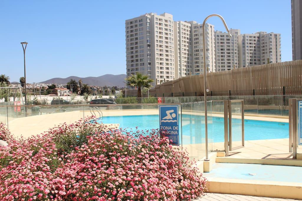 Cassino airbnb reseña de EuroPalace casino-424185