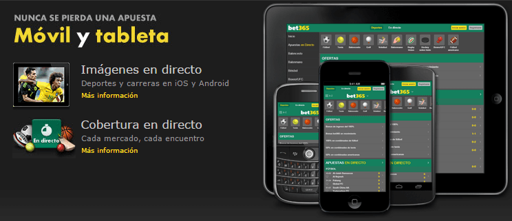 Casino en vivo gratis chat de bet365 español-660910