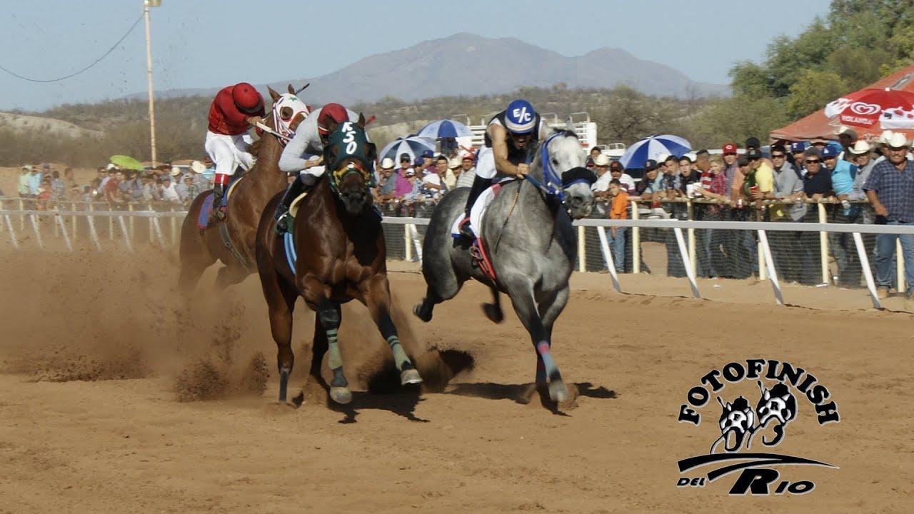 Descargar juegos de carreras de caballos WilliamHill es-537899